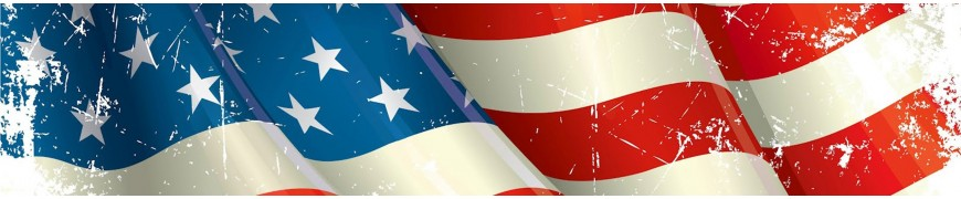 Import Amerika